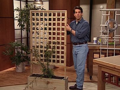 DIY Freestanding Trellis - This rose trellis can be moved around the garden to best suit your needs.