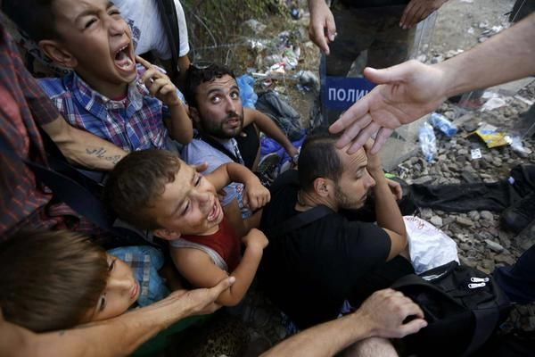 @UNICEF asks Hungary to give refugee children protection they are entitled to (Reuters pics) http://xhne.ws/hFhzr