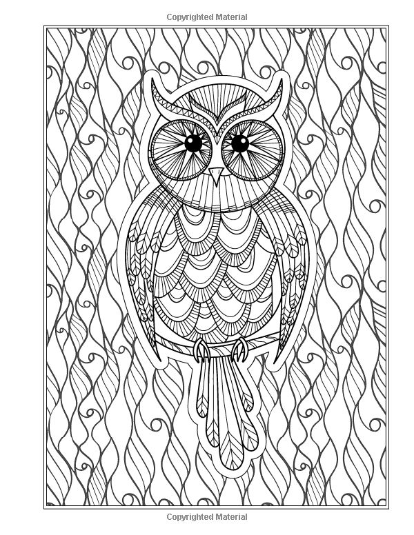 The Eclectic Owl An Adult Coloring Book Volume 1 By G T Haddix