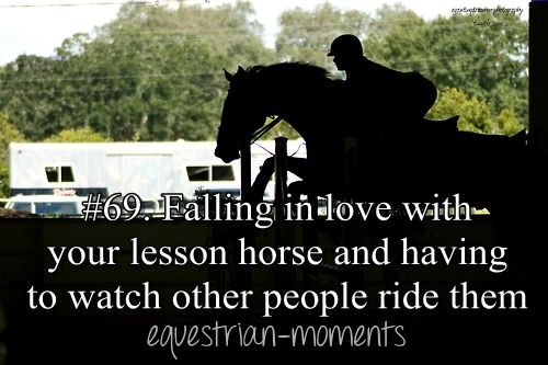 Falling in love with your lesson horse and having to watch other people ride them. #horse #equestrian