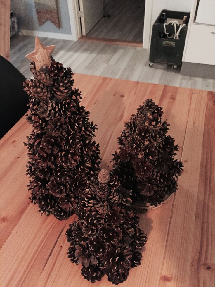 Pine cone Christmas trees. Absolutely stunning..