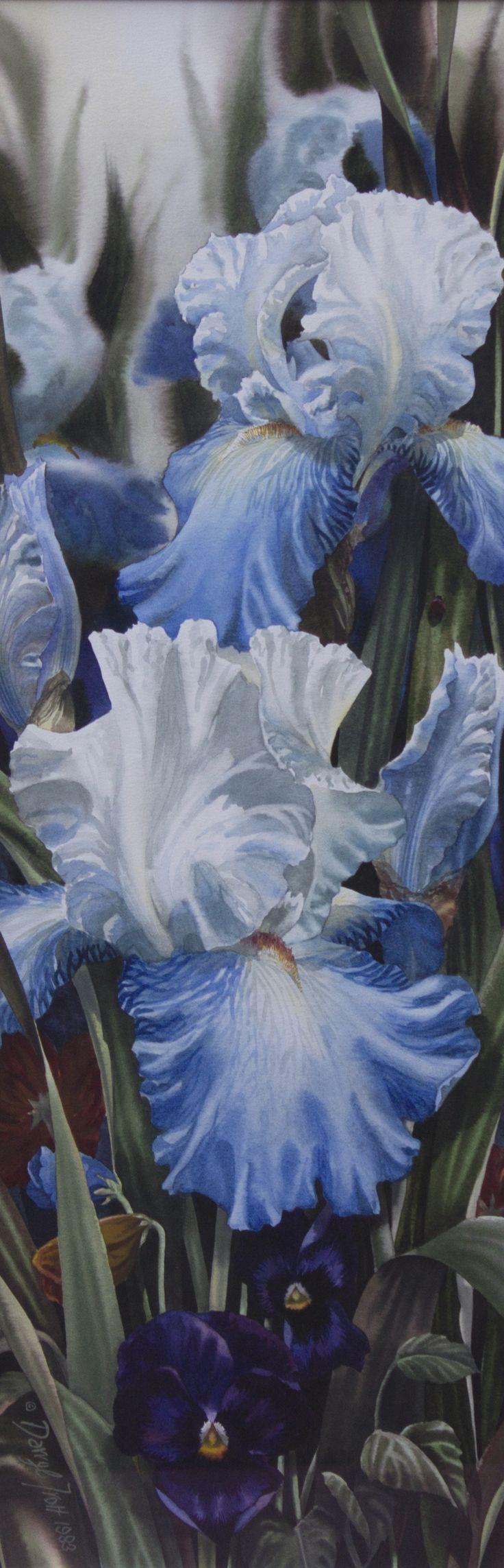 Darryl Trott, watercolor #floral #watercolor