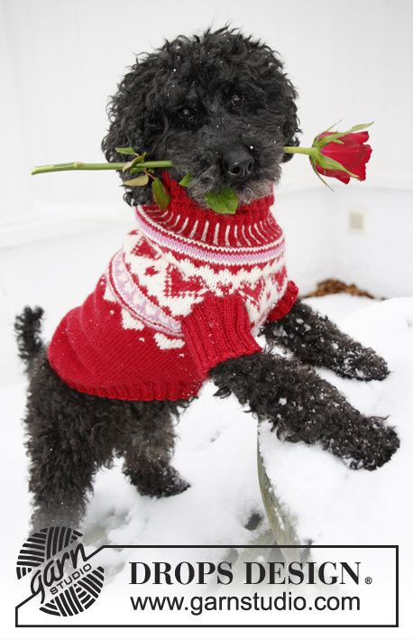 Drops 0-1010, Knitted dogs jumper for valentine with hearts in Karisma