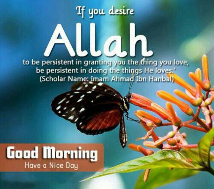 Assalamualaikum | Allah we Serve | Pinterest
