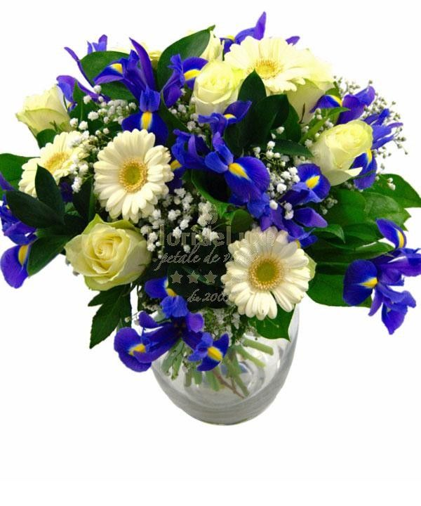 Blue iris and white gerberas in Romania with free delivery