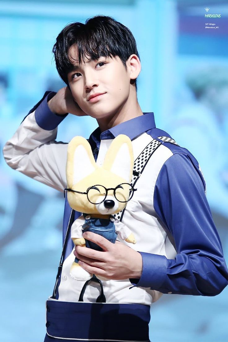 Kim Mingyu | Awwhh that Little fox is from Pororo!! I love that show <3