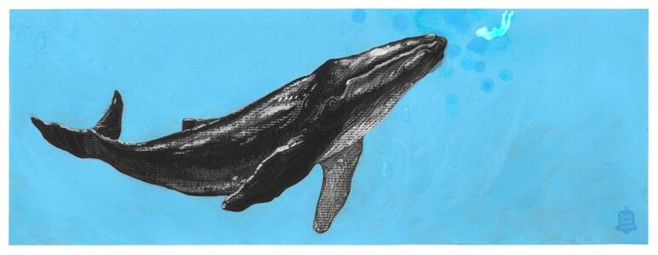 2015.07.04 I want to see whales (1)