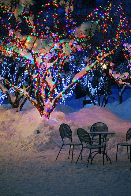 How To Wrap Lights Around Trees Snow Wraps And