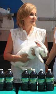 La crianza de animales de traspatio como: gallinas y conejos les ayudarán a tener alimentos de autoconsumo a la población beneficiada.