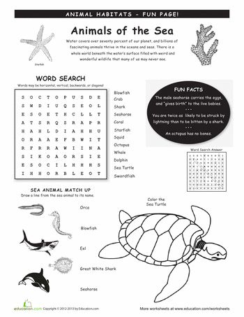 Printables Homeschool Science Worksheets 1000 images about homeschool science on pinterest human worksheets animal habitats ocean