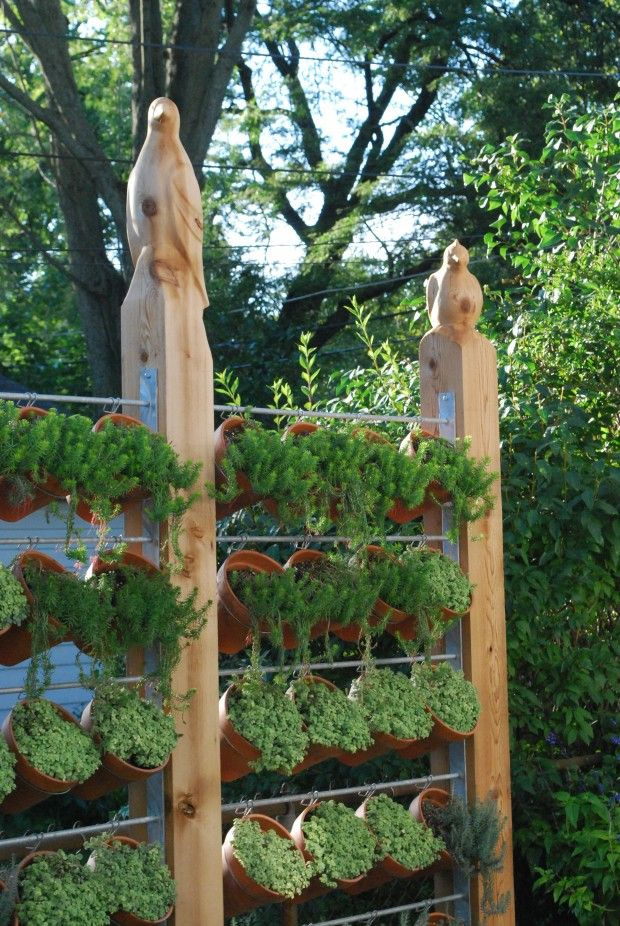 vertical succulent garden used as privacy fence - love the carved bird post tops: Gardens Ideas, Privacy Fence, Gardens Fence, Small Yard, Privacy Screens, Gardens Privacy, Vertical Gardens, Herbs Gardens, Hanging Pots