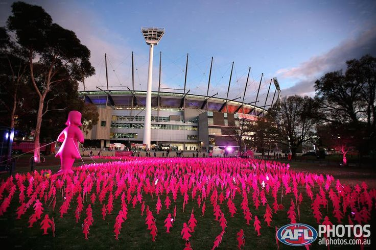 Round 6 - A field of Pink Ladies in support of the Breast Cancer Network of Australia