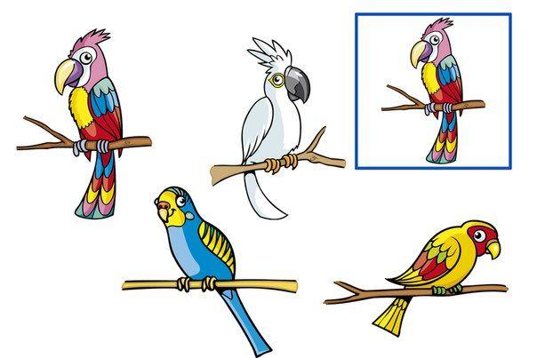 (2016-05) Find den samme papegøje