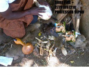 World`s Best love and lost love spell Caster in Africa +27791897218 PROF SIPHO - Krugersdorp - free classifieds in South Africa