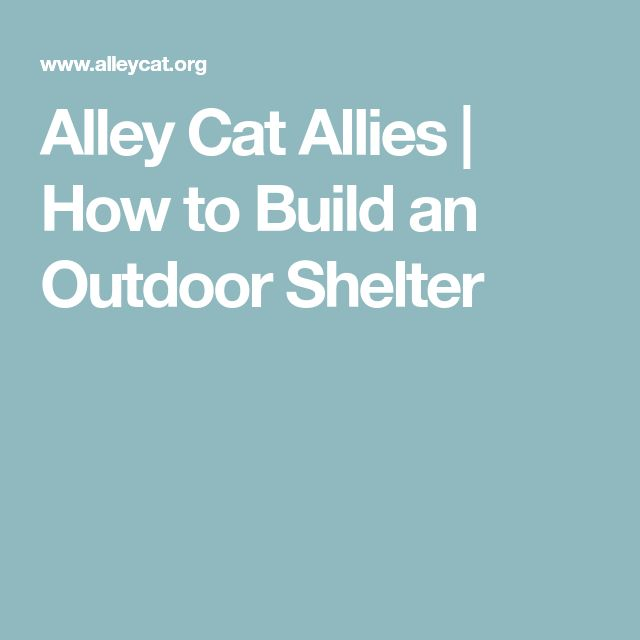 Alley Cat Allies | How to Build an Outdoor Shelter