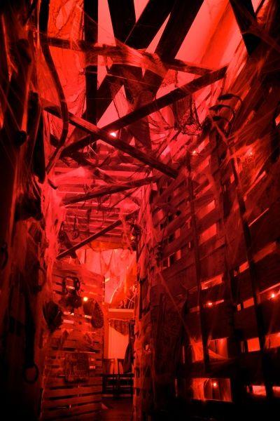 Pallet board walls, gauze, web,  red back lighting.  Nice effect.
