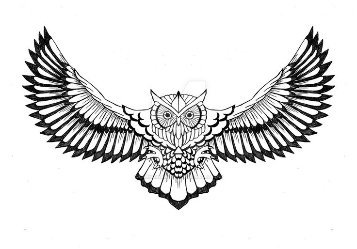 I've wanted for a long time an owl tattoo in my chest so drew it to me. Drew it with pencil and fixed in PhotoShop (reversed other side so both left and right look the same).