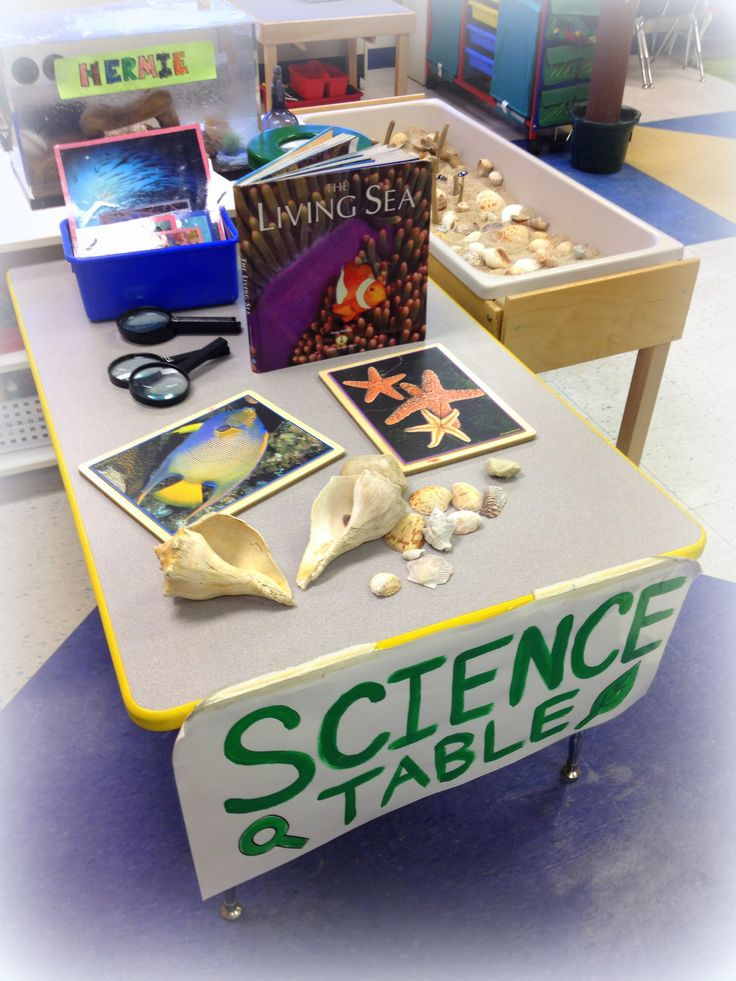Science Table Center: This center changes based on our current thematic unit and has many hands-on items for children to use and explore.  Examples of hands-on materials: magnifying glasses, child-friendly microscopes, aquariums, shells, pine cones, wood pieces, scales/balances, magnets, books, flashcards, sand table, color-mixing tubes, rocks, seeds and growing plants, root-view containers, butterfly habitats, plastic replicas of animals and life stages, a plastic solar system, and more!