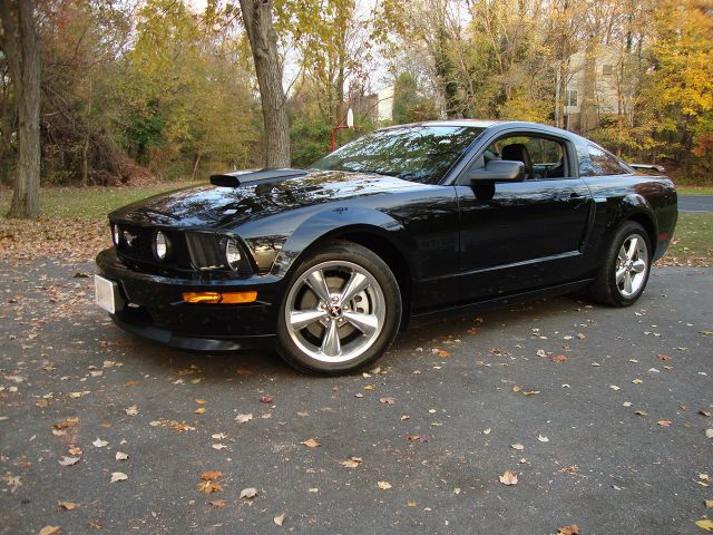 2008 Ford Mustang GT California Special | This is my EXACT car!! And I LOVE IT!!!!!