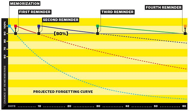 Memorizing a programming language using spaced repetition software  forgetting curve