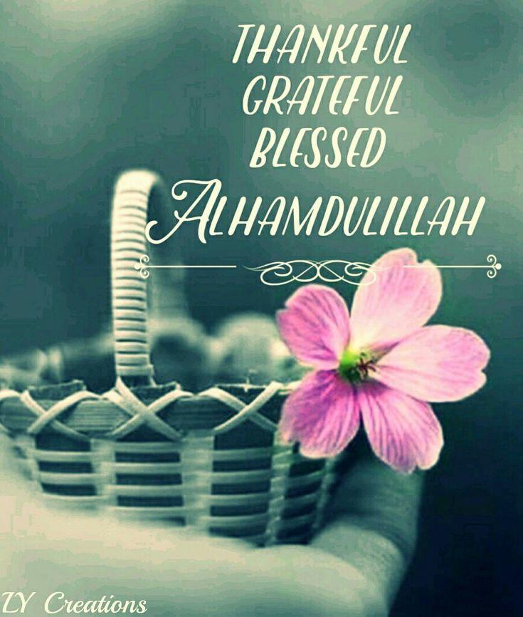 Thankful, grateful,blessed
