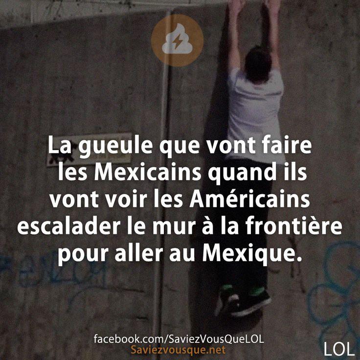 La gueule que vont faire les Mexicains quand ils vont voir les Américains escalader le mur à la frontière pour aller au Mexique. MikkaRocchia