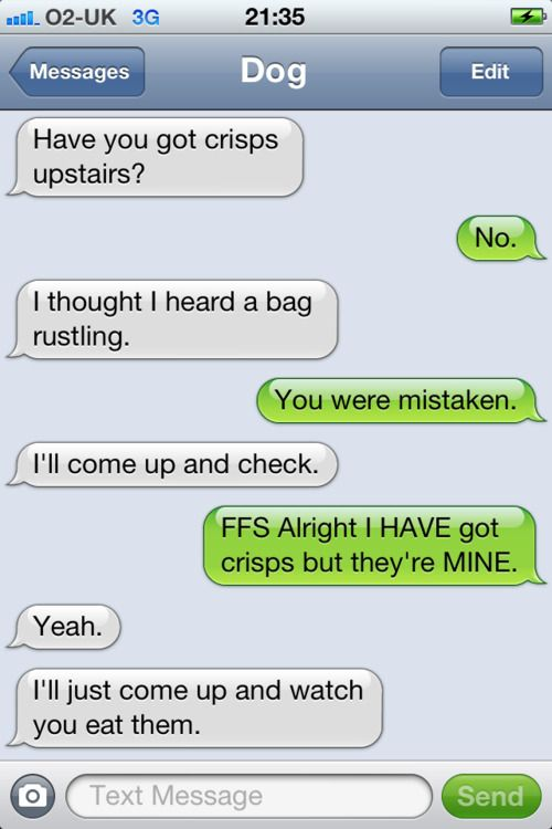 a new tumblr that posts texts from your dog (if your dog could text) check it out, hilarious!!!