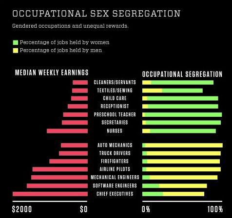 Occupational Sex Segregation 105