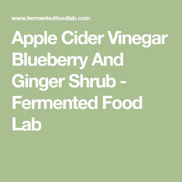 Apple Cider Vinegar Blueberry And Ginger Shrub - Fermented Food Lab