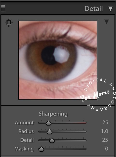 Lightroom Sharpening: How to Make it Work