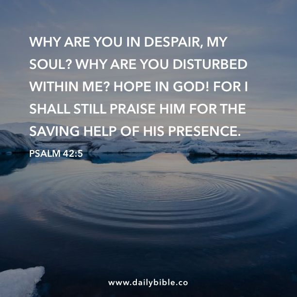 Psalm 42:5  Why are you in despair, my soul? Why are you disturbed within me? Hope in God! For I shall still praise him for the saving help of his presence.