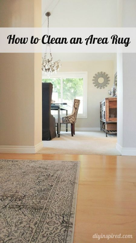 How To Clean An Area Rug #cleaning #hacks #rug
