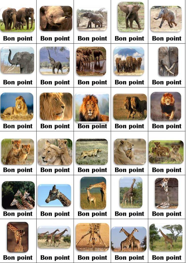 bons points afrique