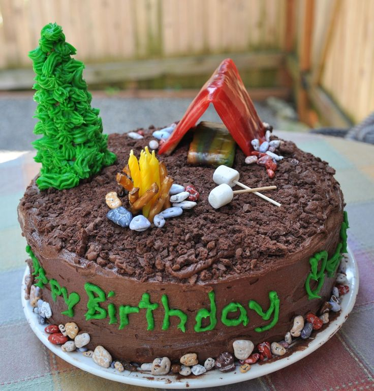 Camping theme boys 9th birthday party.  Camping cake.