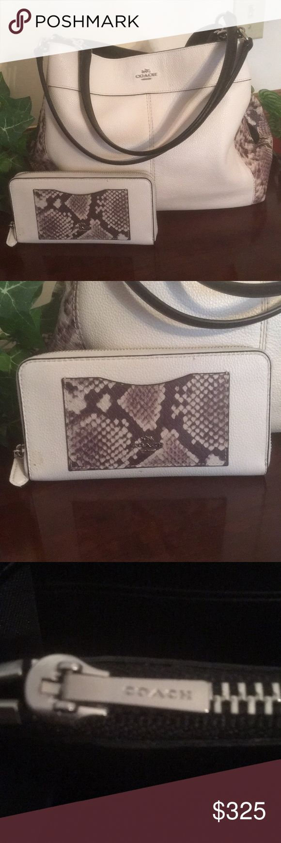 Beautiful Rare Authentic Coach And Wallet! Authentic and rare Coach hobo bag, and matching wallet in like new condition!  Colors are snakeskin, cream and black! Coach Bags Hobos