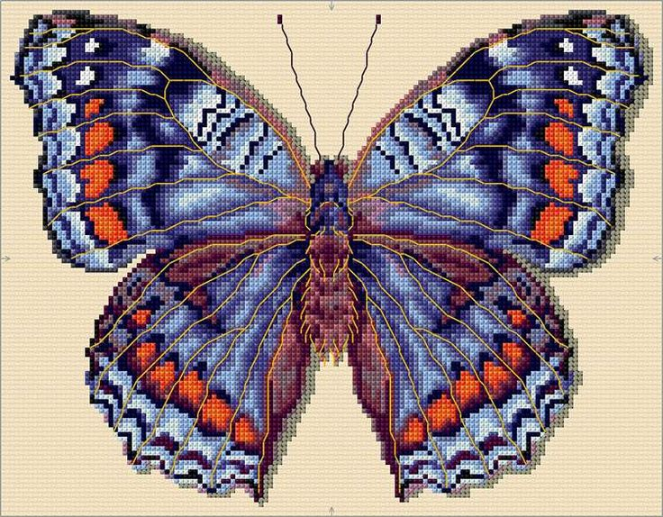 Gaudy Commodore Butterfly Cross Stitch Chart Download | sewandso