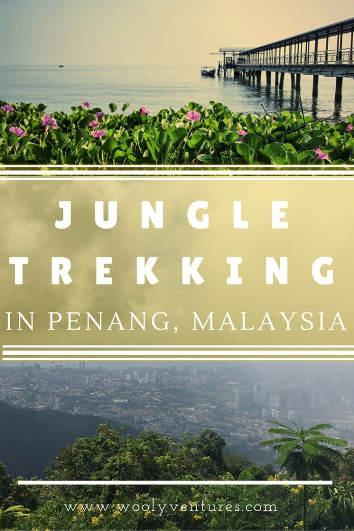 Jungle trekking in Penang, Malaysia. Includes trails to Monkey Beach, Turtle Beach (Pantai Kerachut) and up Penang Hill through the Botanical Gardens. by Wooly Ventures.