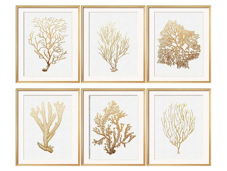 Gold Coral Print Set of Six Coral Art Prints, White Beach House Art, Fan Coral, Living Room Art, Gold Artwork, Gold Coral, Beach Bedroom Art by BeachHouseGallery on Etsy https://www.etsy.com/listing/182185450/gold-coral-print-set-of-six-coral-art