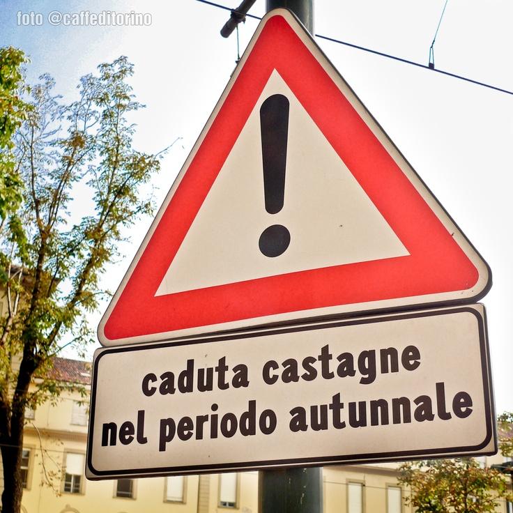 #Torino & #autunno