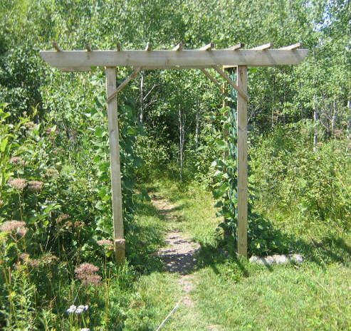 Free Arbor Trellis Plans - Free Arbor Trellis Plan -- Old Fashioned Wood Trellis - How to Build a Trellis