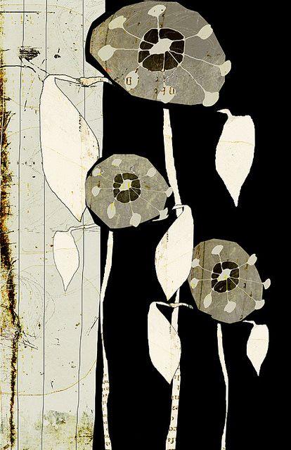 Linda Vachon - jardin