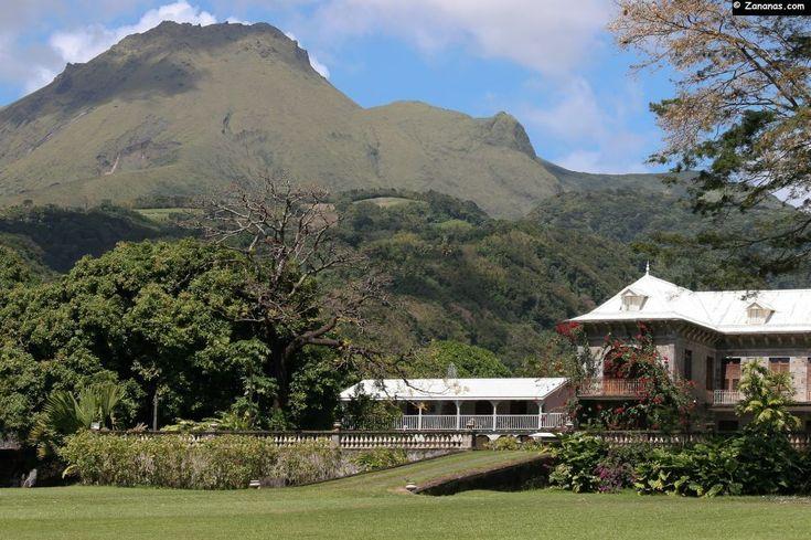 L'habitation Depaz et la montagne Pelée. Saint-Pierre, Martinique.