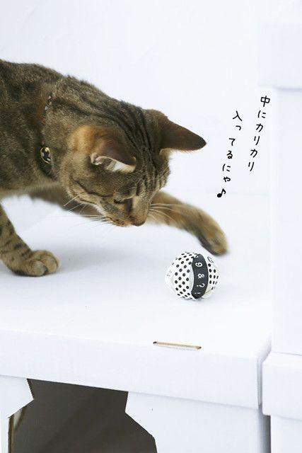 材料費0円 トイレットペーパーの芯とマスキングテープで作る猫の手作りおもちゃ 窪田千紘フォトスタイリングwebマガジン Klastyling 暮らす スタイリング Powered By ライブドアブログ 猫 ベッド 手作り 猫 おもちゃ 猫