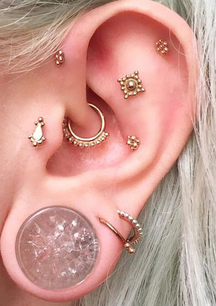 Multiple Ear Piercing Combination Ideas at MyBodiArt.com - Shattered Glass Ear Gauge Plug - Daith Earring Hoop - Crystal Tragus 16G Stud - Constellation Cartilage Helix Pinna Ring