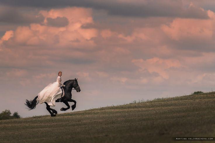 Bride on the run - null