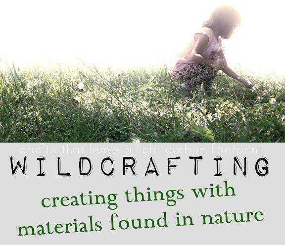 wildcrafting