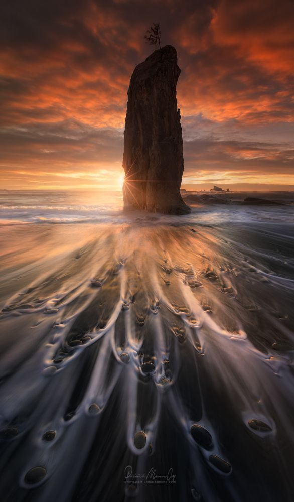 Dreamscapes, Olympic National Park, Washington by Patrick Marson Ong on 500px                                                                                                                                                                                 More