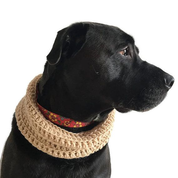 Hand crochet cowl for canines! Unique, beautiful photography prop/ Holiday gift!  ------------ C O L O R S:  These are made to order so you choose any color (refer to last image for current color swatch & select coordinating number from drop down menu.  ------------ M E A S U R E M