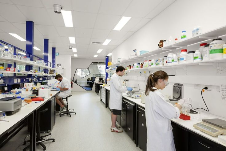 ANU Colleges of Science - Chemical Science » Lyons Architecture - Melbourne, Australia
