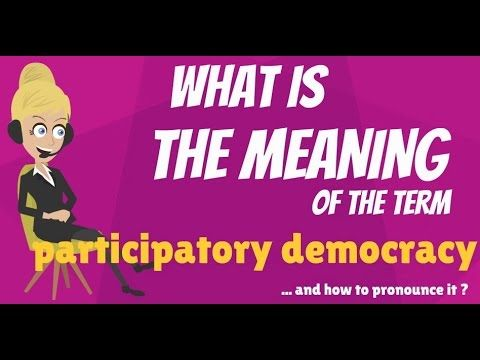 What is PARTICIPATORY DEMOCRACY? What does PARTICIPATORY DEMOCRACY mean?